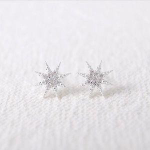 NWOT Silver Snowflake Star Snow White Earrings